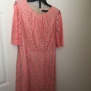 Alex Marie Midi Lace Dress